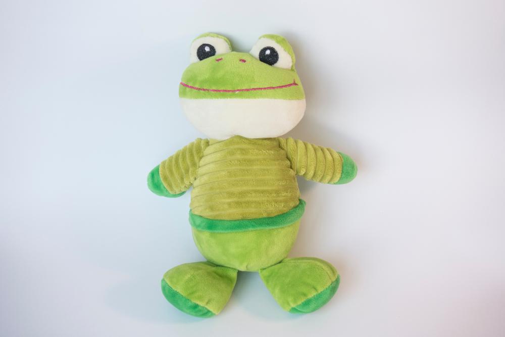 カエル好きの心理が知りたい!コレクションするのはどうして?